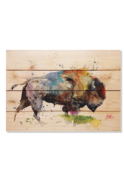 daydreamhq Colorful Bison (20
