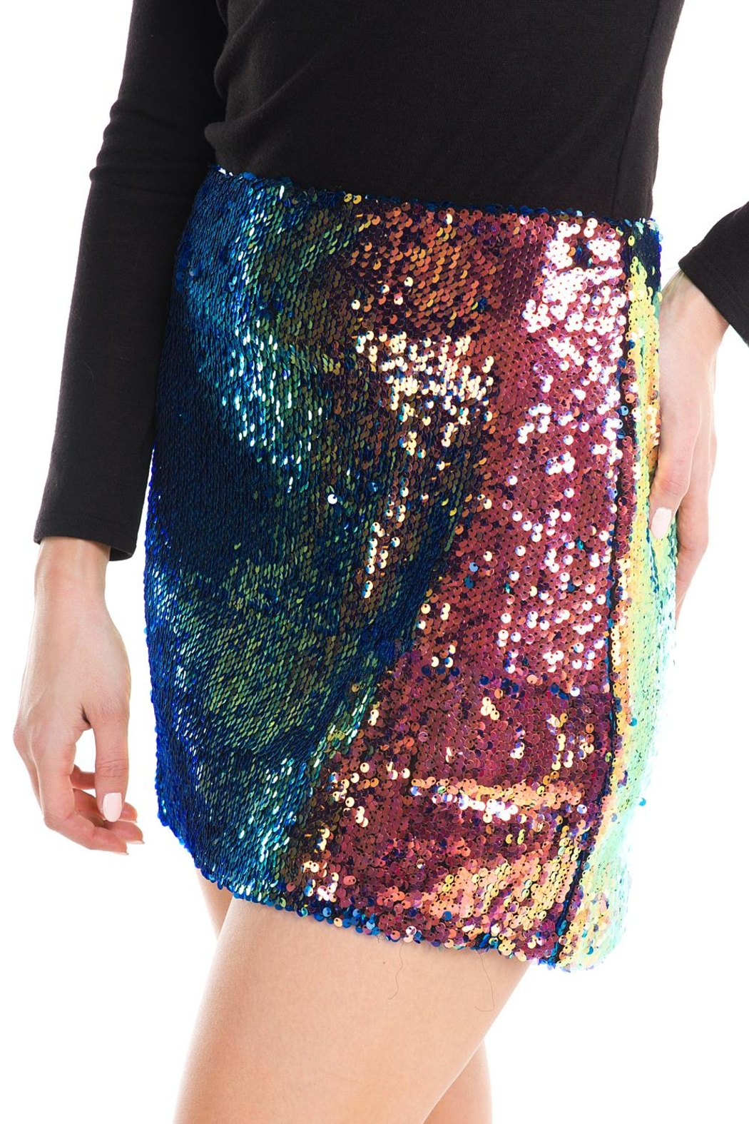 Lush Colorful Sequin Skirt - Front Full Image