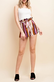 Wild Honey Colorful Stripe Shorts - Front cropped