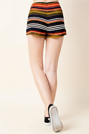 Wild Honey Colorful Stripe Shorts - Side cropped