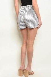 Compendium Striped Board Shorts W/ Pockets - Front full body