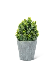 Abbott Collection Cone Faux Plant - Product Mini Image