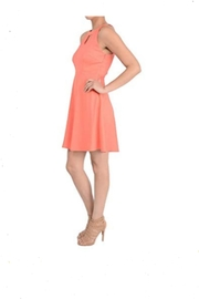 Aryeh Coral Dress - Product Mini Image