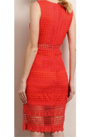 Soieblu Coral Eyelet Dress - Front full body