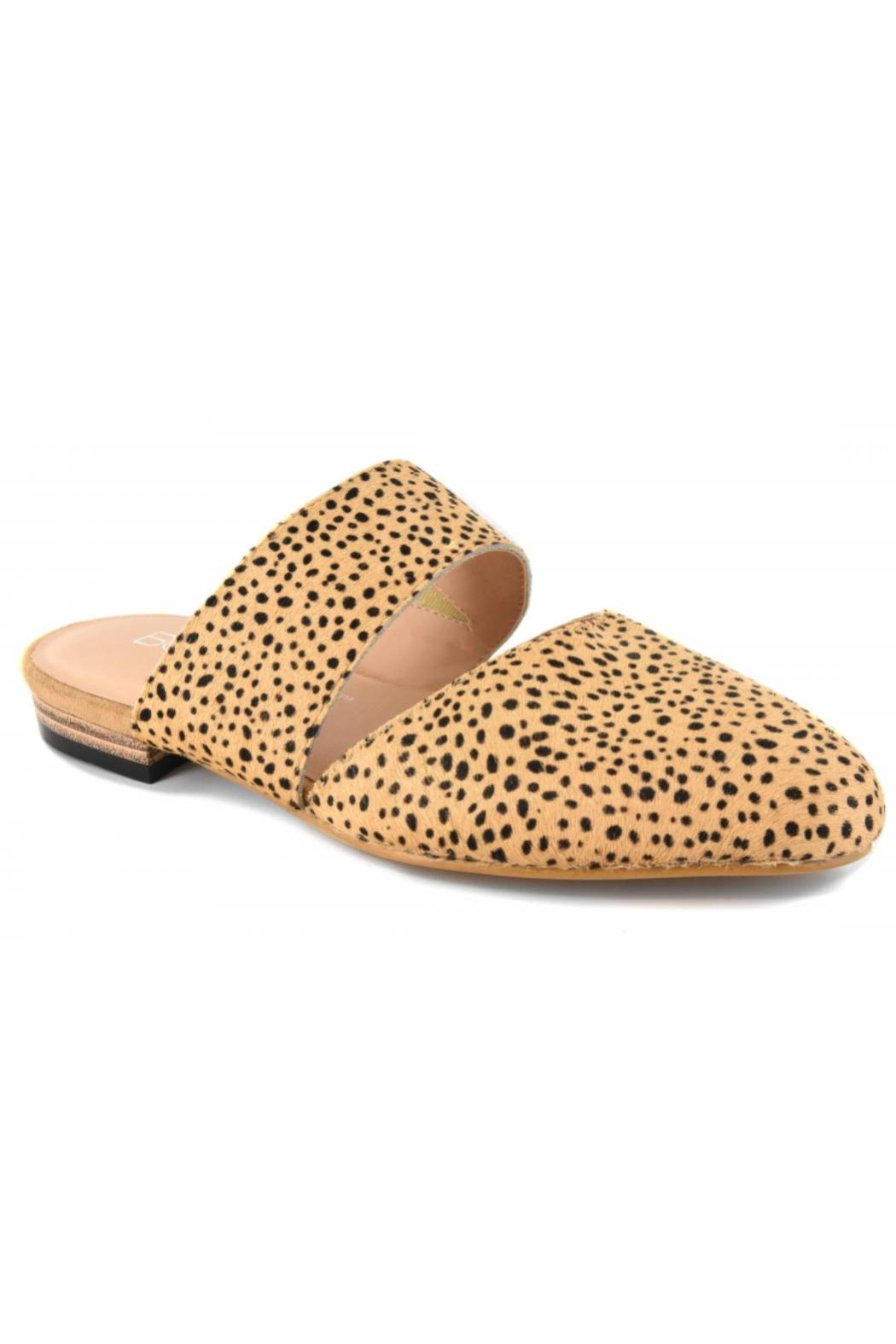 Corky's Shoes Carina Cheetah Slide - Front Cropped Image