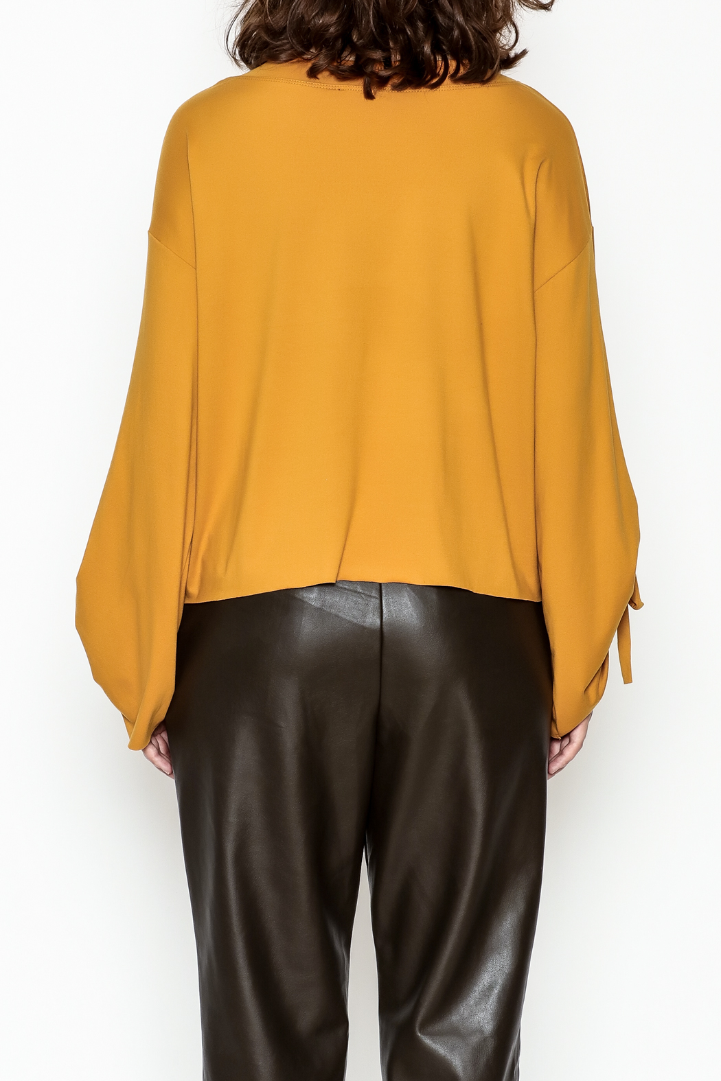 Cotton Bleu Bell Sleeve Top - Back Cropped Image