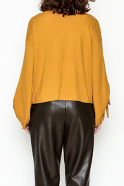 Cotton Bleu Bell Sleeve Top - Back cropped