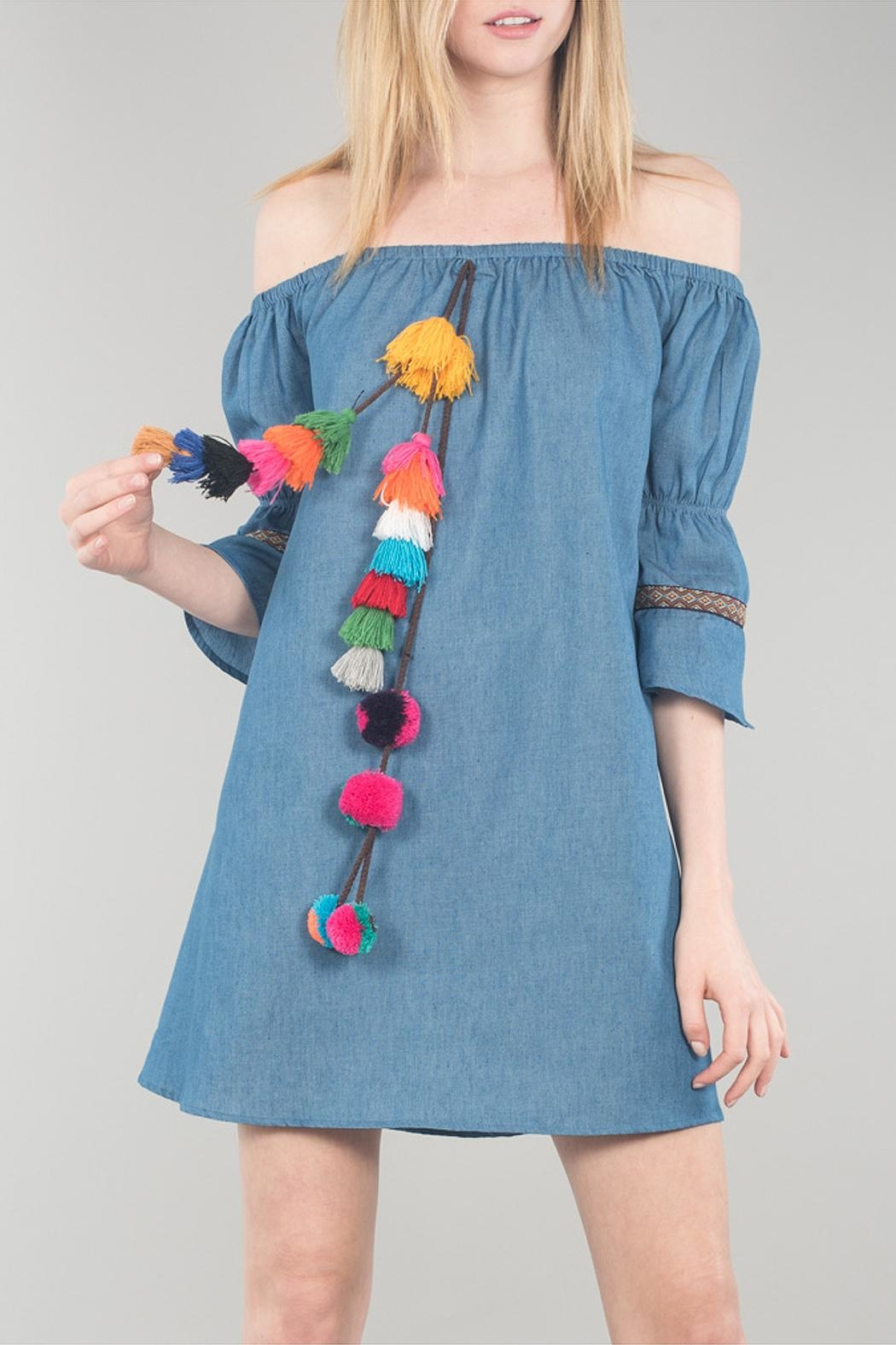 Cotton Bleu Bell Sleeve Dress - Front Cropped Image