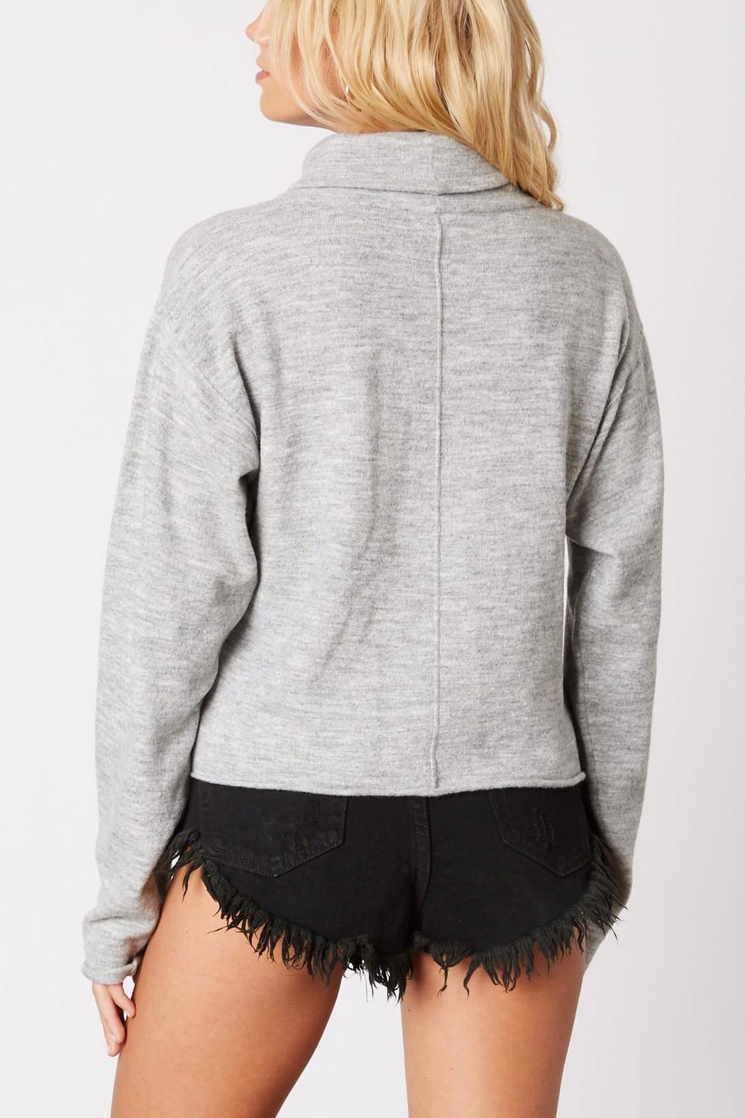 Cotton Candy Cropped Turtleneck Sweater - Back Cropped Image