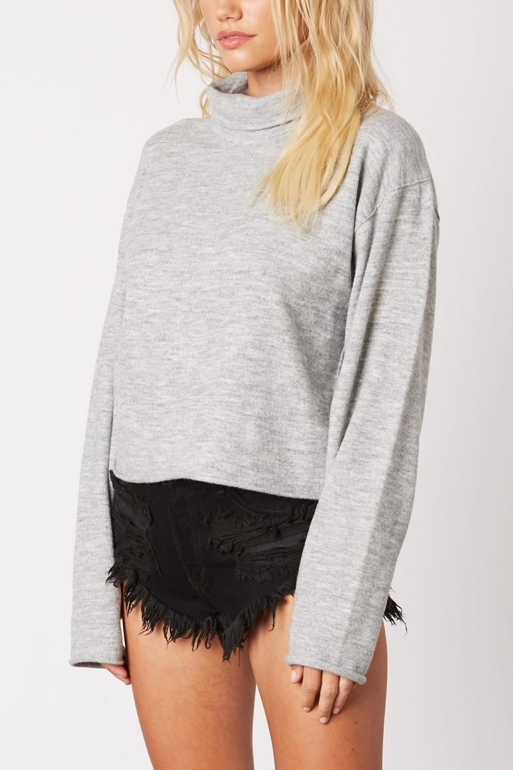 Cotton Candy Cropped Turtleneck Sweater - Side Cropped Image