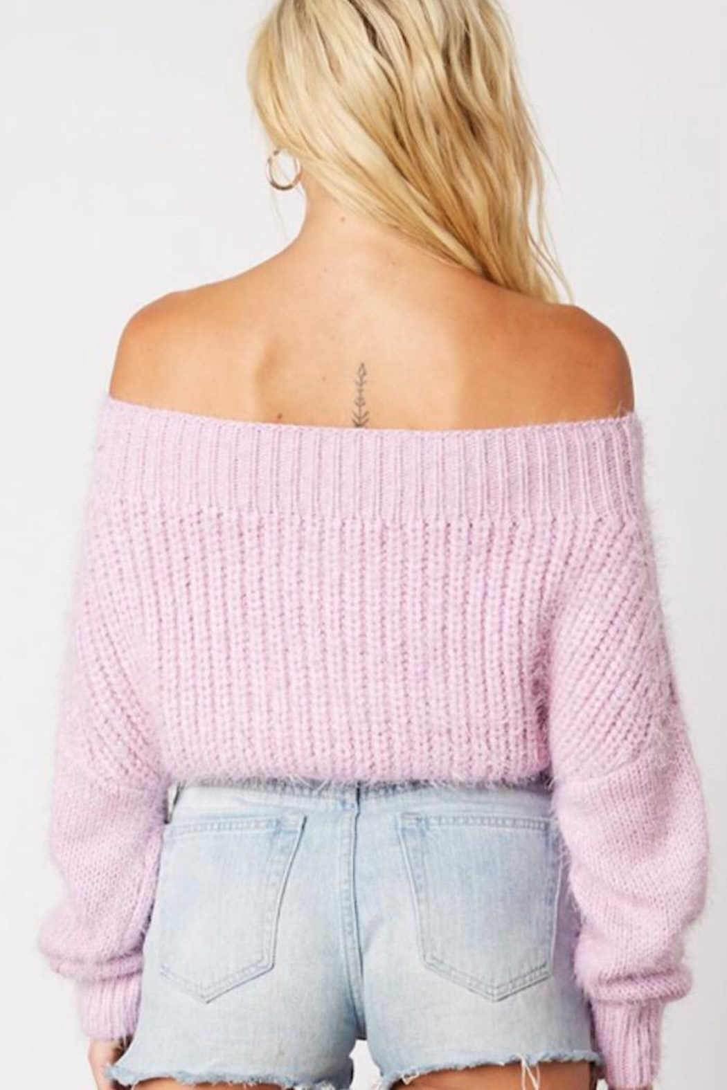 Cotton Candy Fuzzy Cropped Sweater - Front Full Image