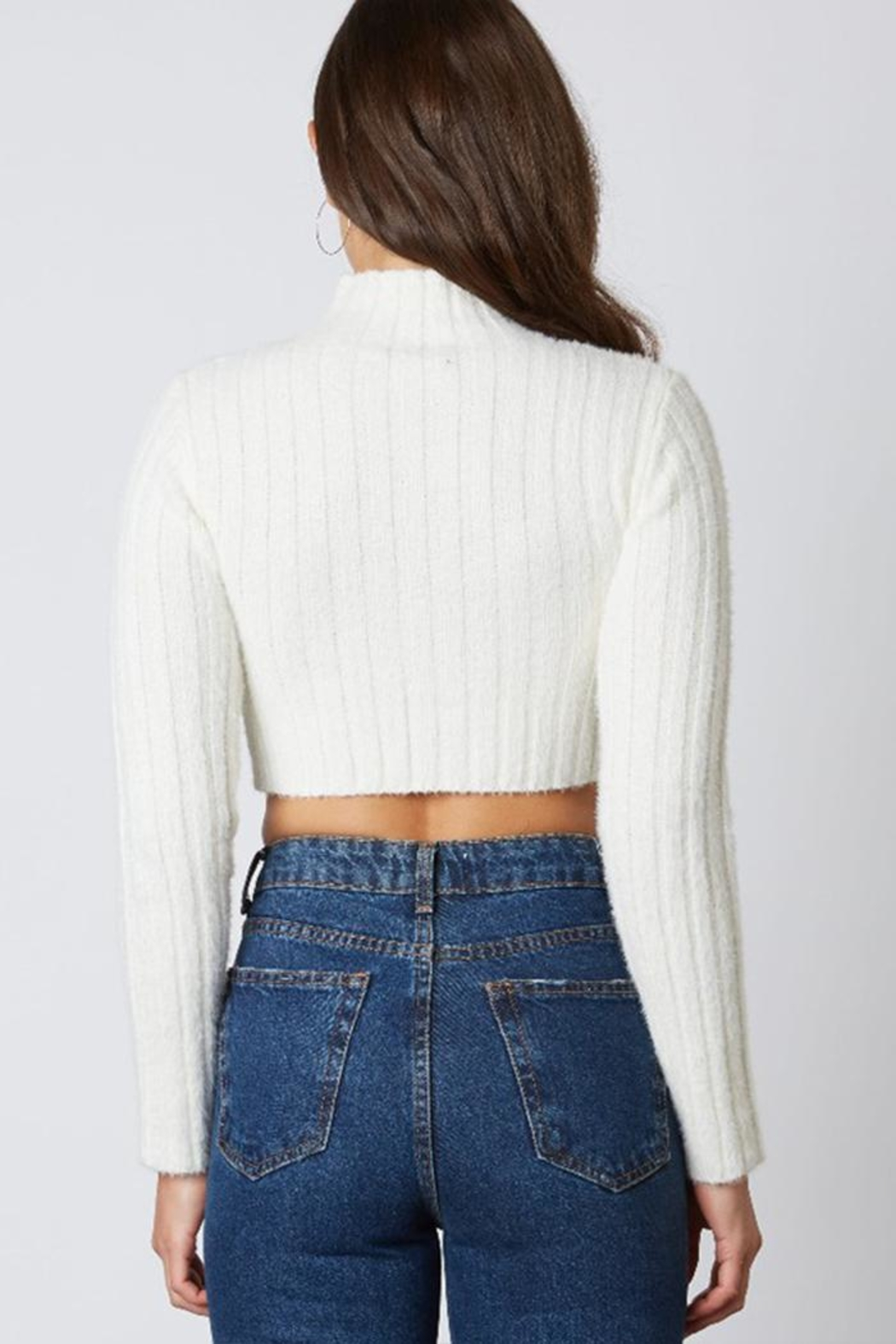 Cotton Candy Ribbed Cropped Sweater - Back Cropped Image