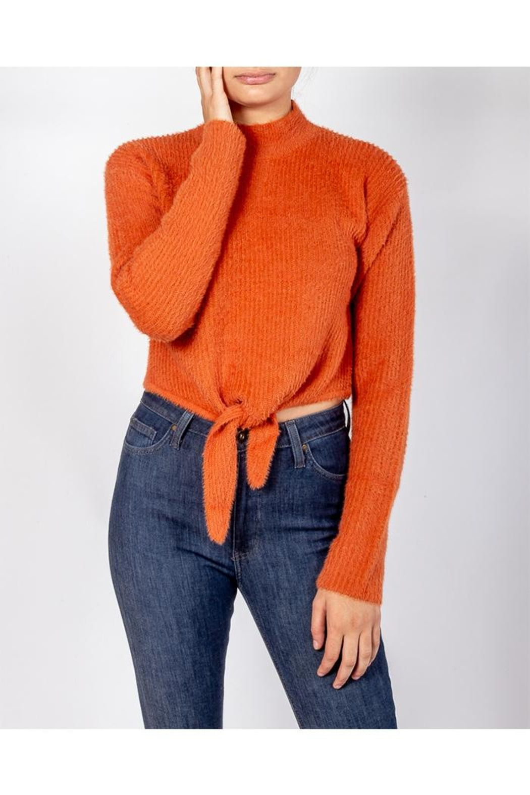 Cotton Candy Soft Front-Tie Sweater - Front Cropped Image