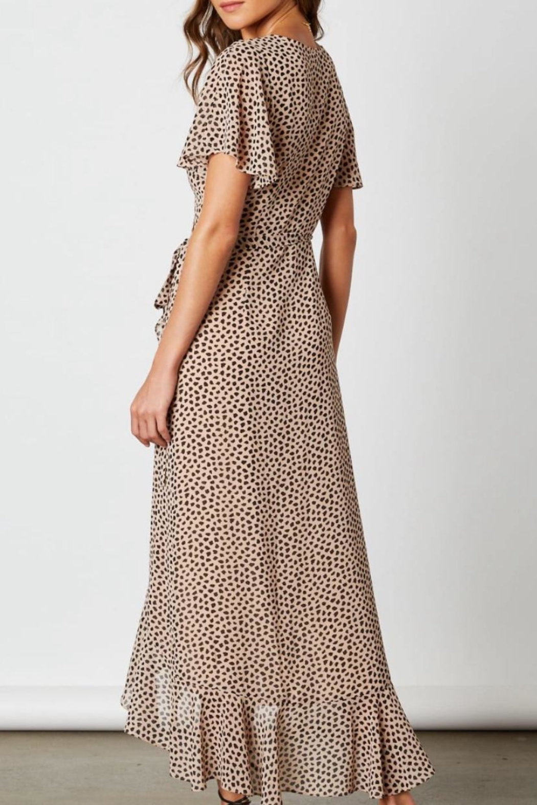 Cotton Candy LA Animal Print Wrap-Dress - Front Full Image