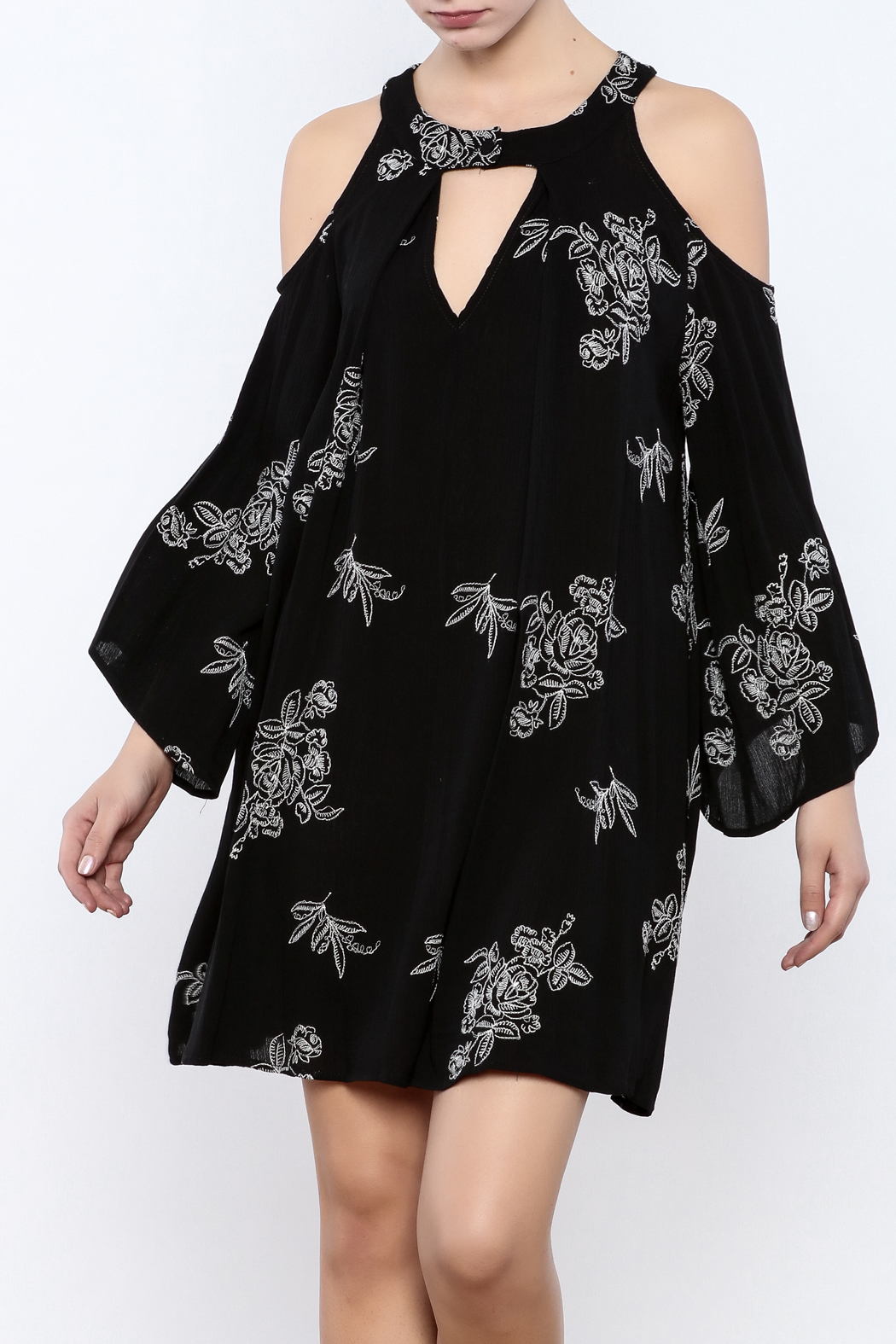 Coveted Clothing Embroidered Dress - Main Image