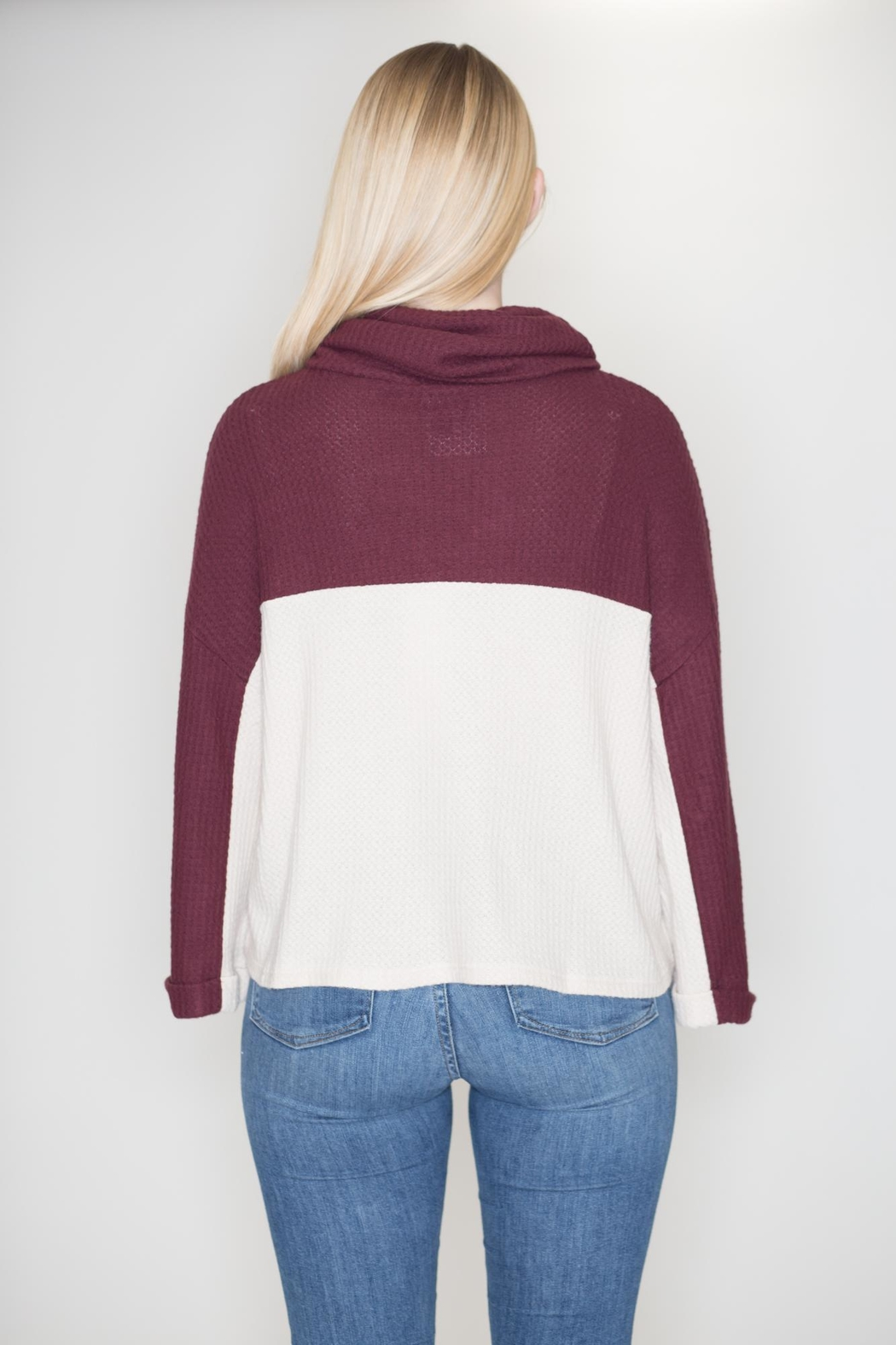 Lumiere Cowl Neck Sweater - Side Cropped Image
