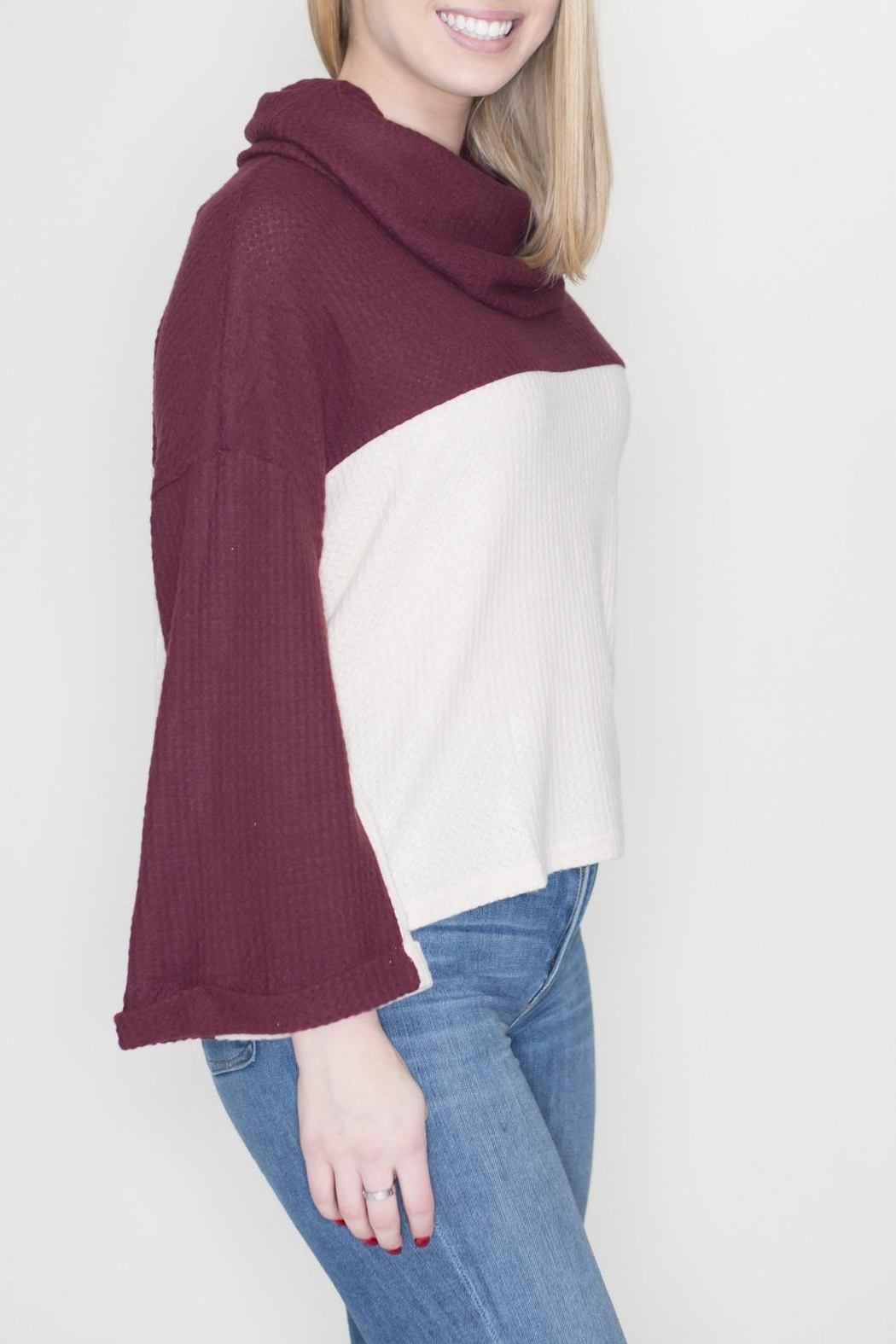Lumiere Cowl Neck Sweater - Front Full Image