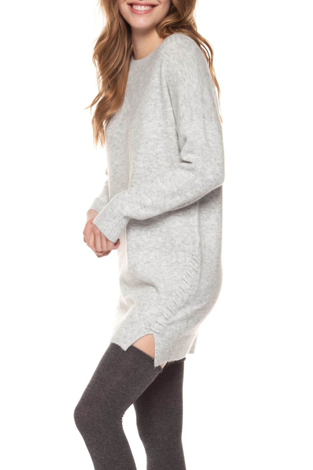 Dex Cozy Sweater Dress - Front Cropped Image