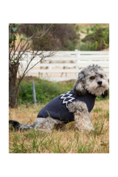 Barefoot Dreams COZYCHIC NORDIC PET SWEATER - Alternate List Image