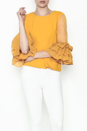 cq by cq Mesh Sleeve Top - Product Mini Image