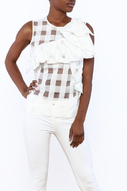 Shoptiques Product: Organza Ruffle Top