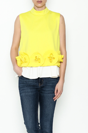 cq by cq Underlay Blouse - Front cropped