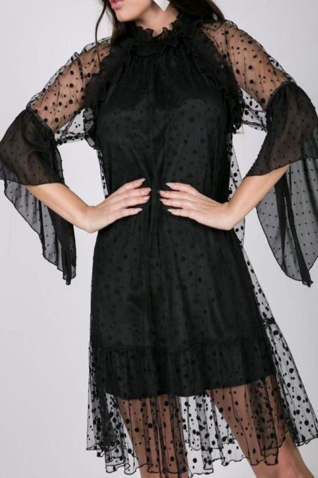 cq by cq Flirty Black Dress - Front Cropped Image