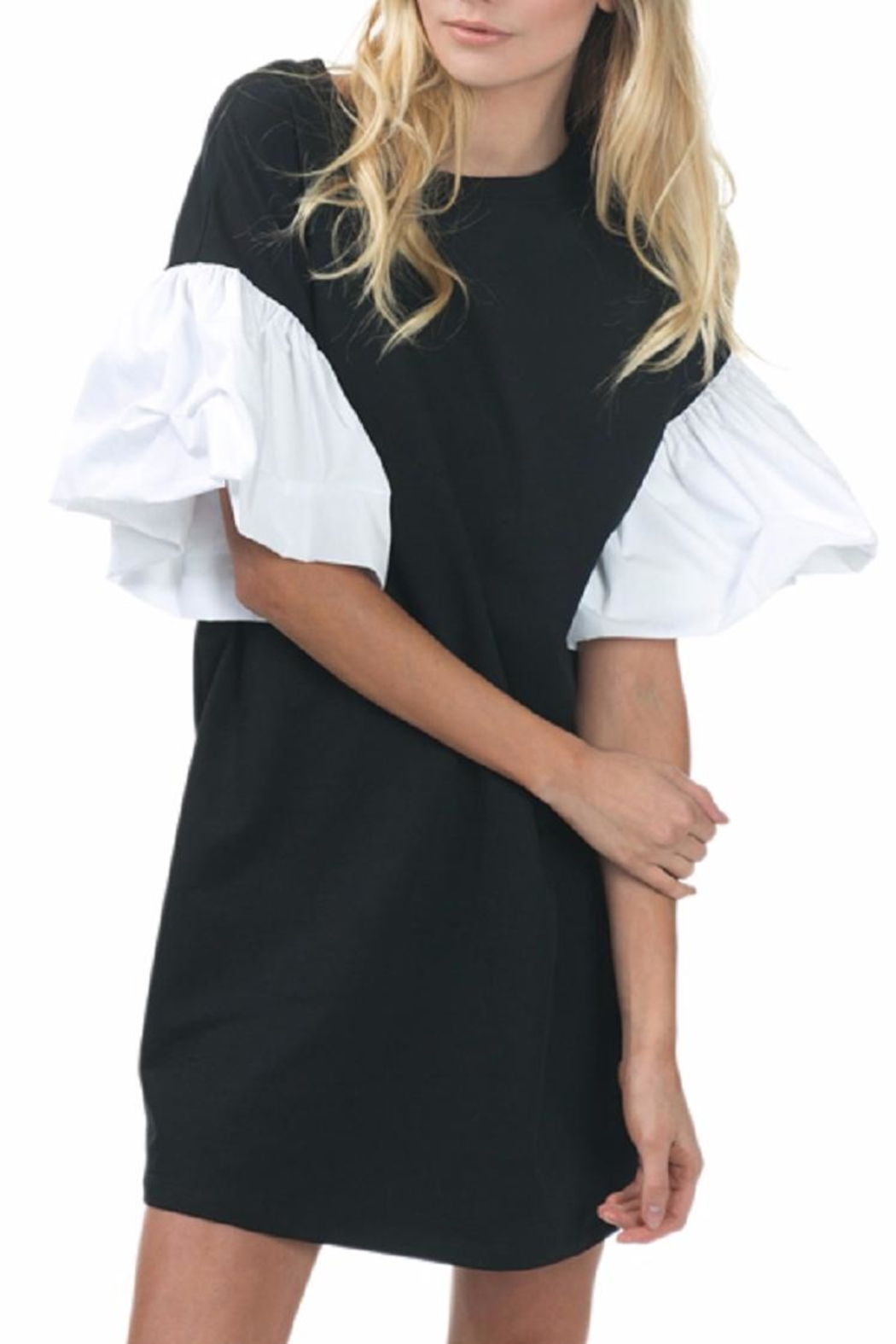 cq by cq Ruffle Sleeve Dress - Front Cropped Image