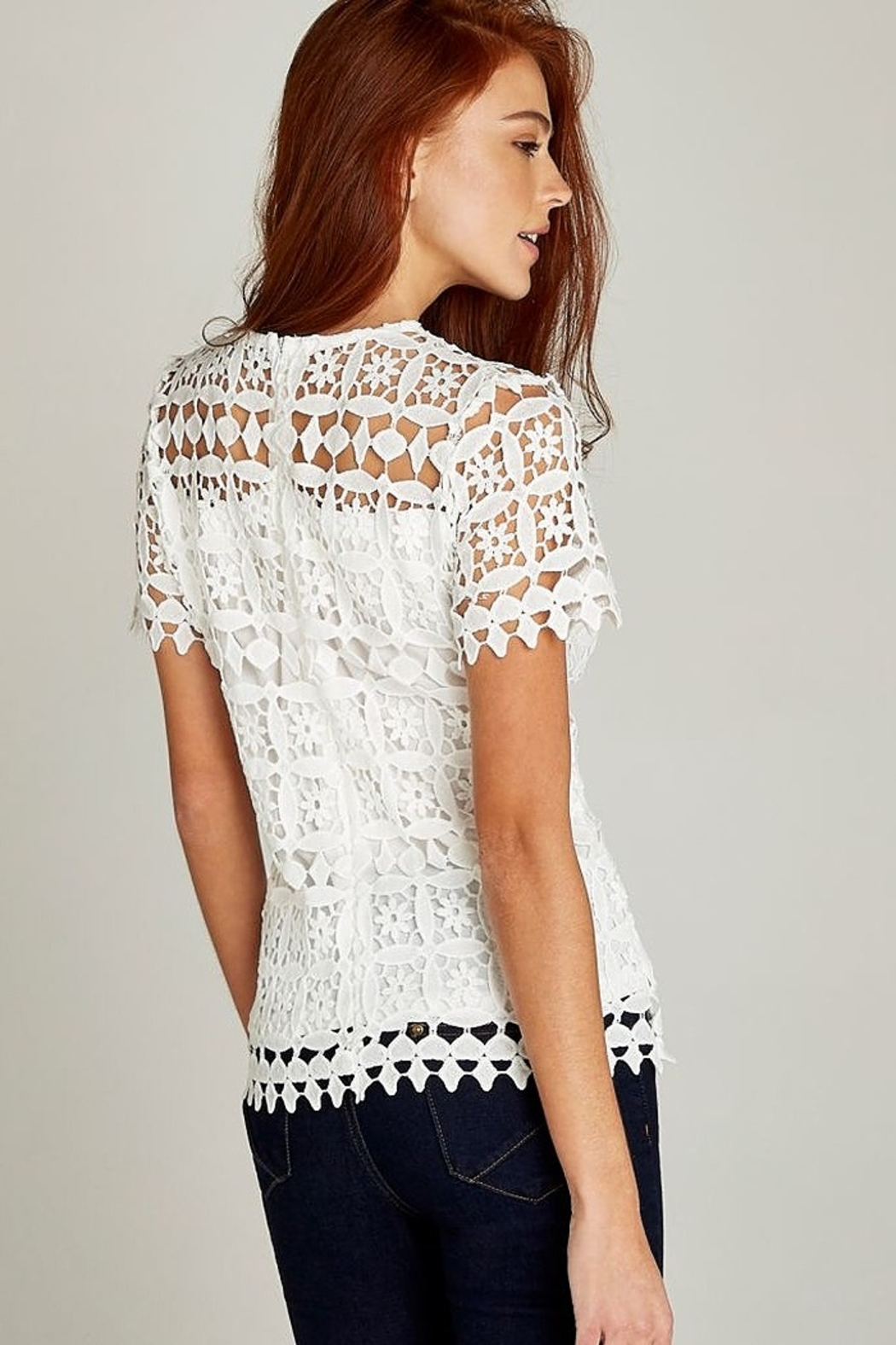 Apricot Cream Lace Short Sleeve Top - Front Full Image