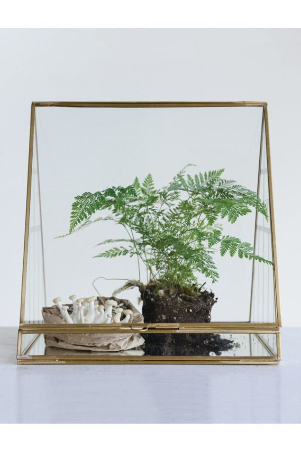 Creative Co-Op Brass & Glass Terrarium - Front Cropped Image