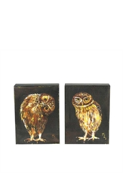 Creative Co-Op Owl Print Set - Front cropped