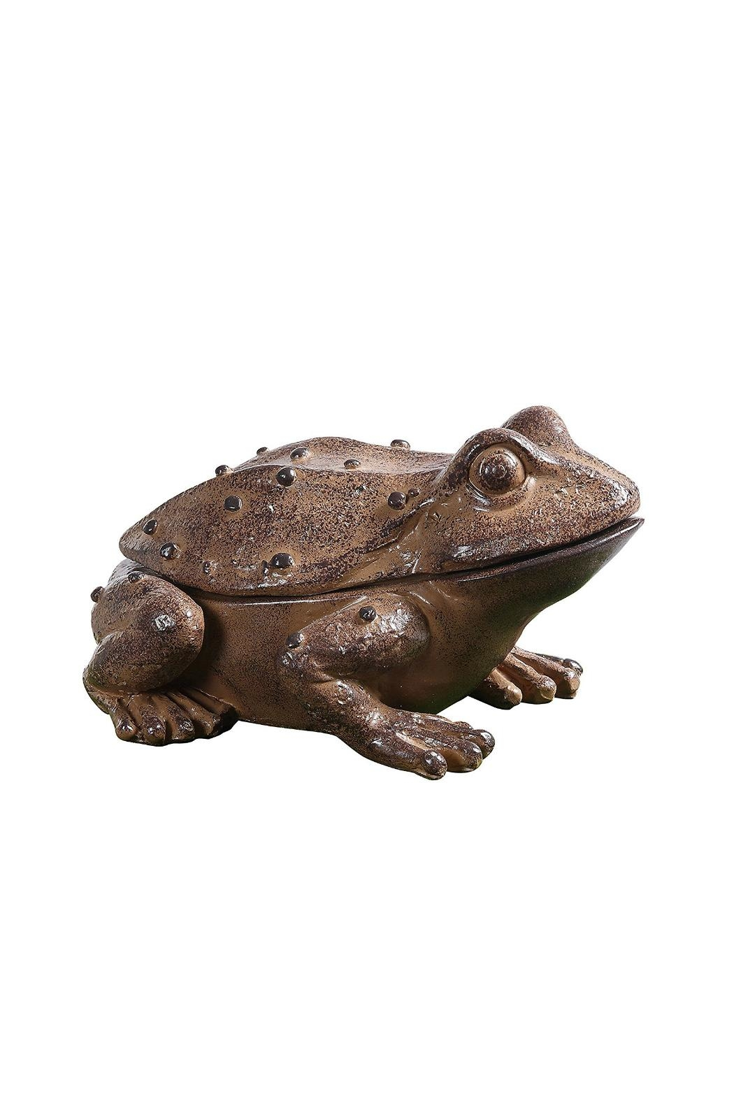 Creative Co-Op Rustic Frog Key Holder - Main Image