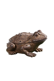 Creative Co-Op Rustic Frog Key Holder - Front cropped