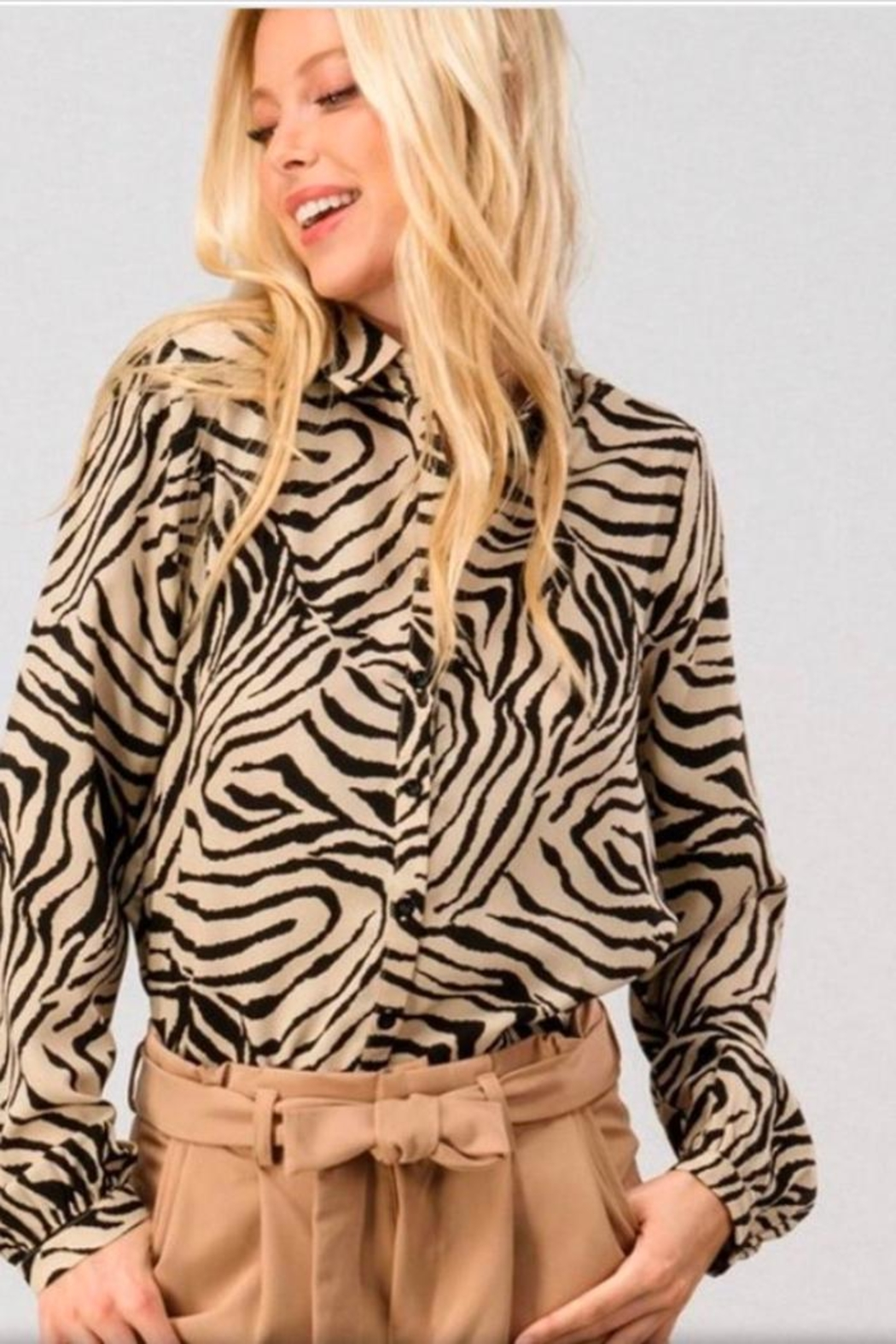 crescent Zebra Print Blouse - Front Cropped Image