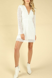 Wild Honey Crochet Bell Sleeve Dress - Back cropped