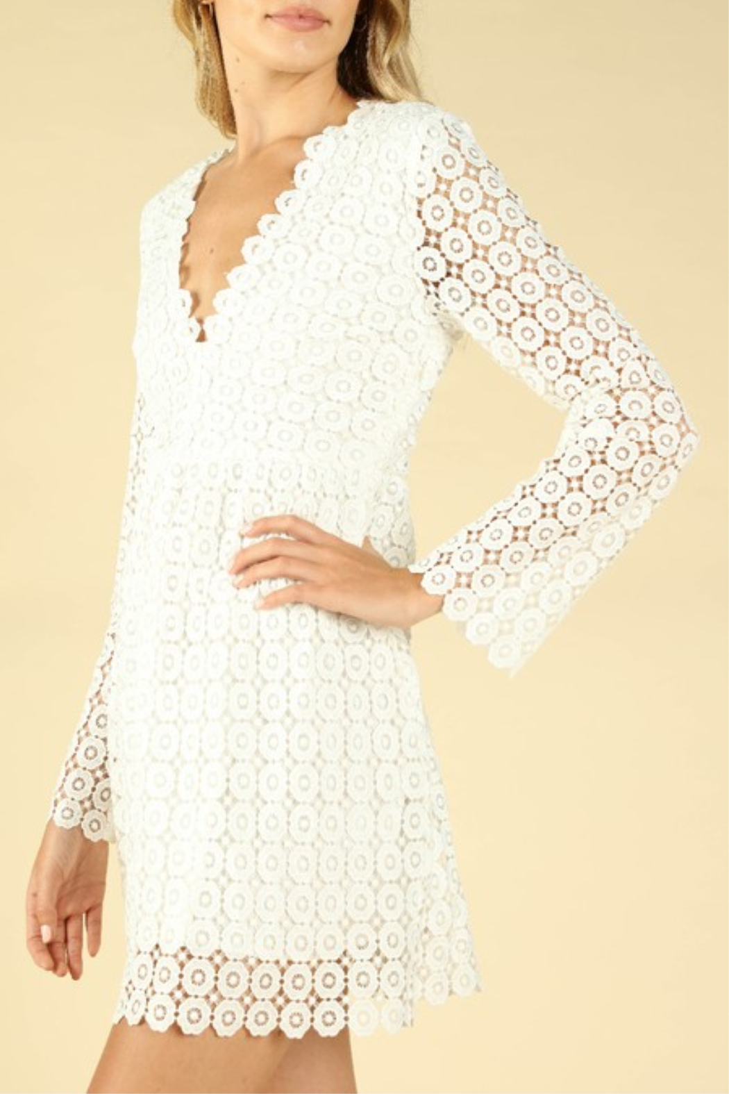 Wild Honey Crochet Bell Sleeve Dress - Front Full Image