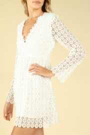 Wild Honey Crochet Bell Sleeve Dress - Front full body