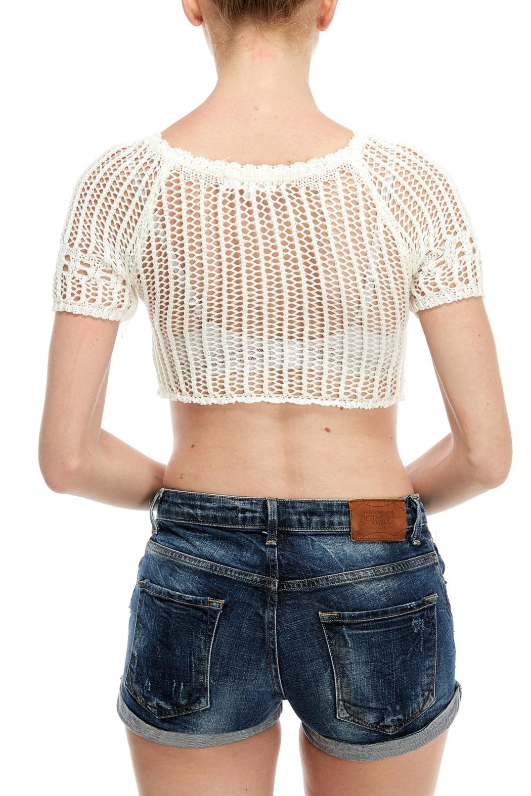 Wild Honey Crochet Crop Top - Side Cropped Image