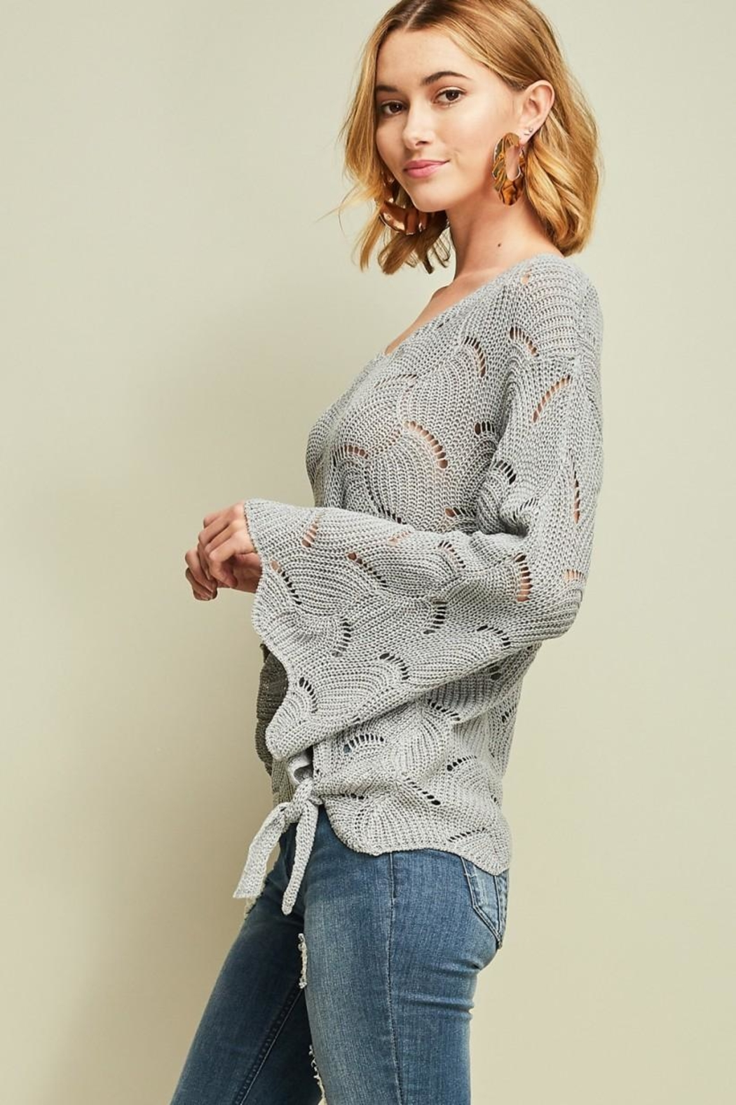 Entro Crochet Knit Top - Back Cropped Image