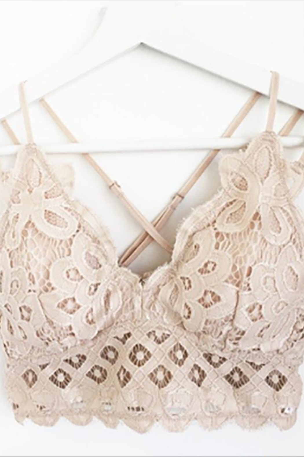 Anemone Crochet Lace Bralette - Front Cropped Image