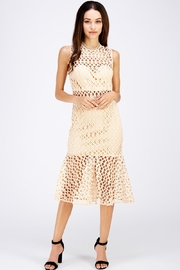Jealous Tomato Crochet Midi Dress - Product Mini Image