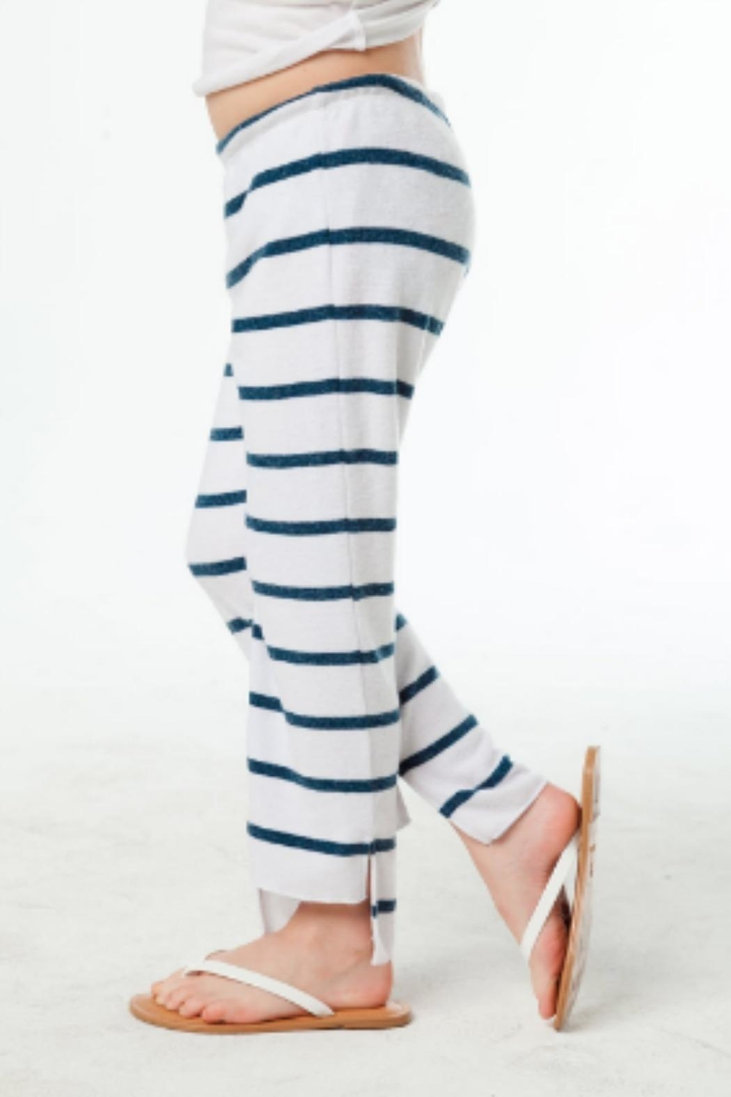 Chaser Crop Stripe Pant - Front Cropped Image