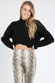Wild Honey Cropped Sweater - Front cropped