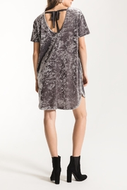 z supply Crushed Velour Dress - Back cropped