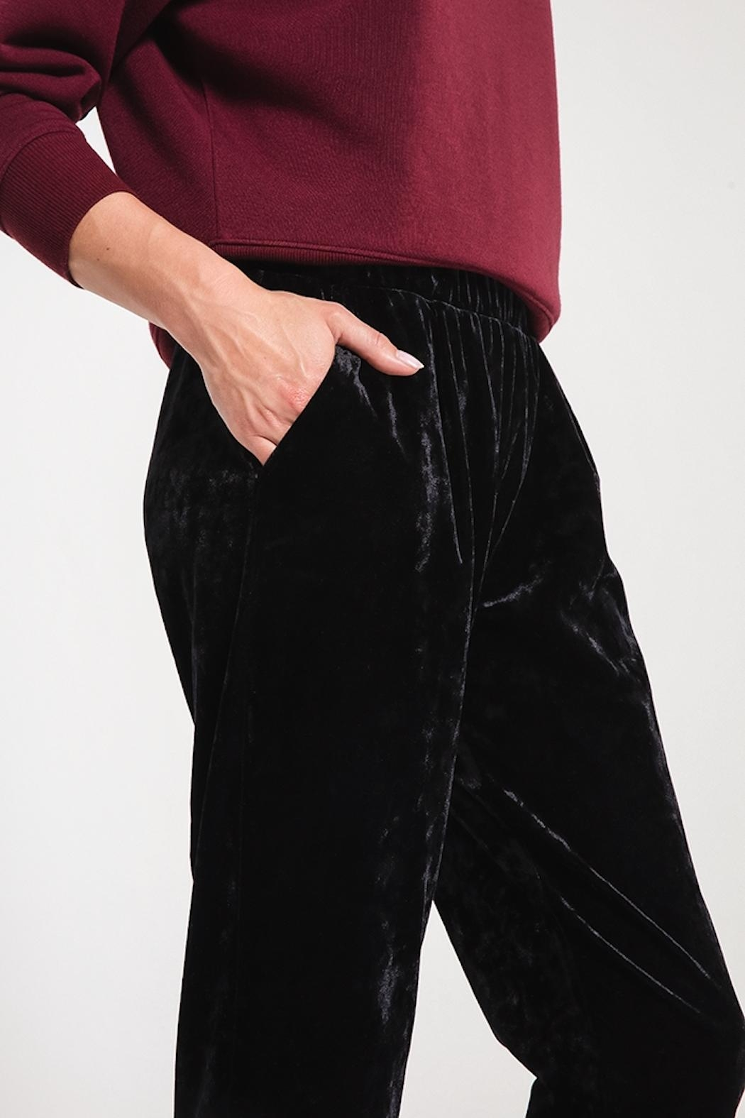 z supply Crushed Velour Trouser - Back Cropped Image