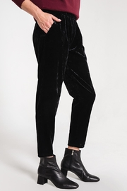z supply Crushed Velour Trouser - Front full body