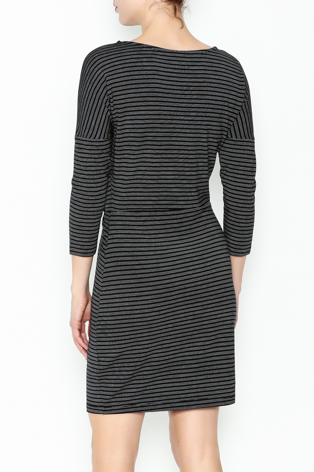 Cupcakes and Cashmere Waist Flattering Stripe Dress - Back Cropped Image