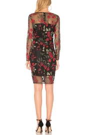 Cupcakes & Cashmere Embroidered Mesh Dress - Front full body