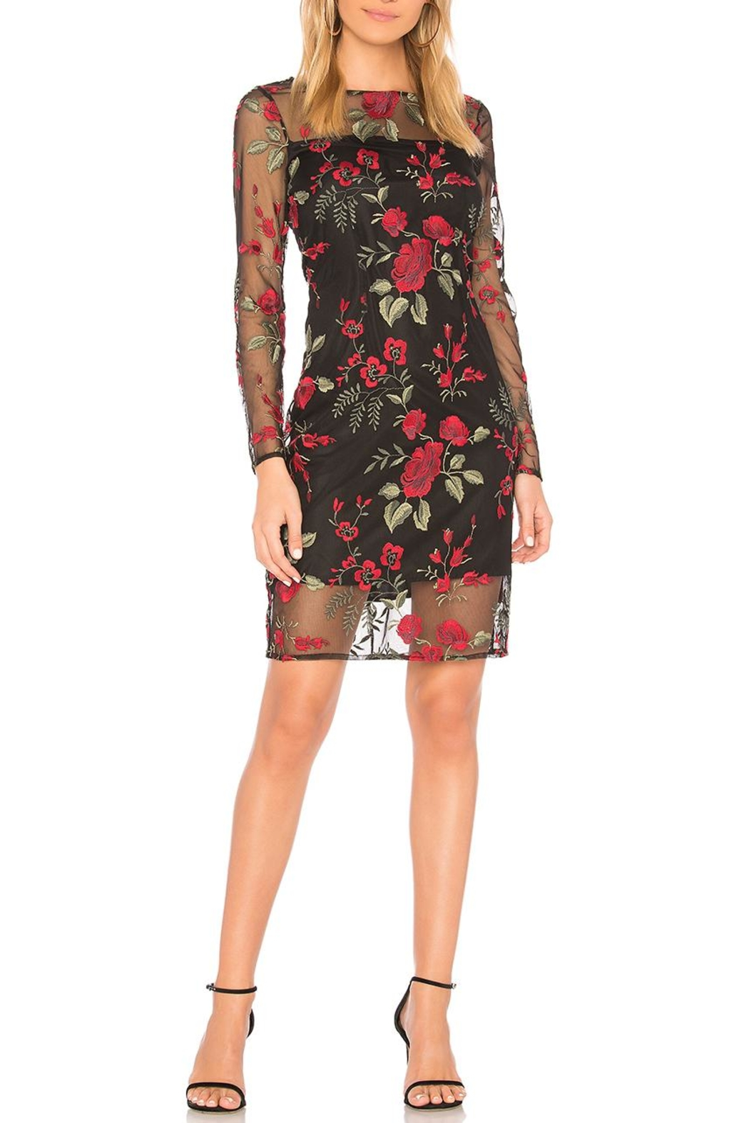 Cupcakes & Cashmere Embroidered Mesh Dress - Main Image