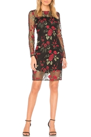 Cupcakes & Cashmere Embroidered Mesh Dress - Front cropped